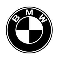 We service BMW bikes